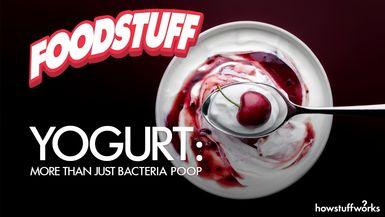 FoodStuff - Yogurt: More Than Just Bacteria Poop