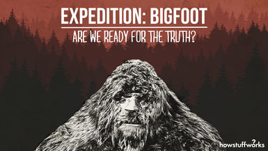 Expedition Bigfoot: Are We Ready For The Truth?