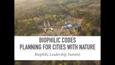 Biophilic Codes: Planning for Cities with Nature