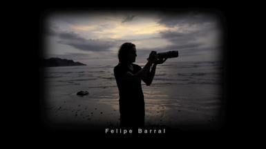 Felipe Barral Trailer