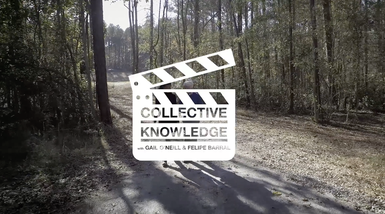 Collective Knowledge Episode 4 with Steve Nygren