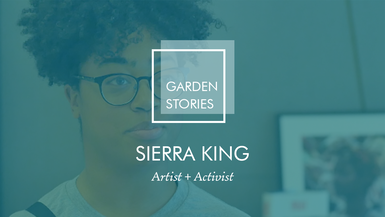 Garden Stories: Sierra King